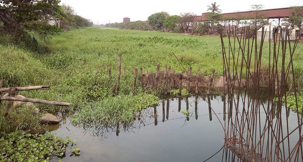 'Taladanda canal water polluted, unfit for human consumption'