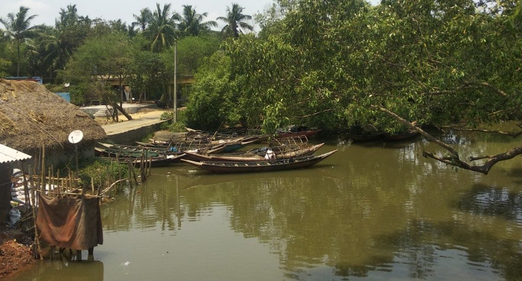 Fishing ban to protect sea turtle lifted in Gahiramatha