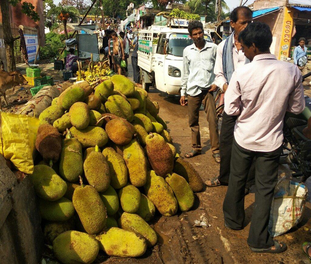 Falling prices of jackfruits worries farmers