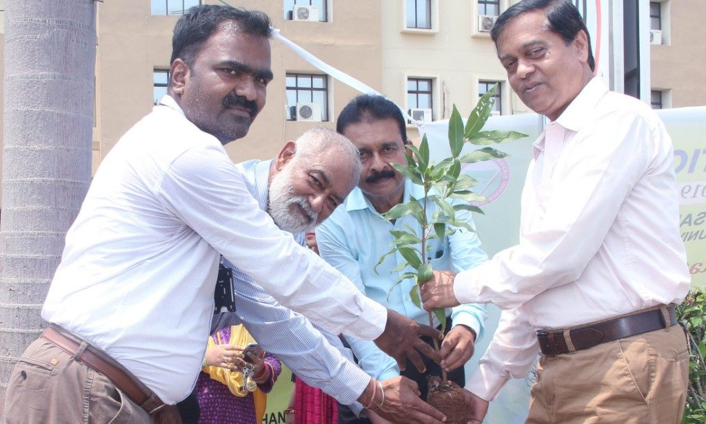 SOA plants trees to celebrate foundation day