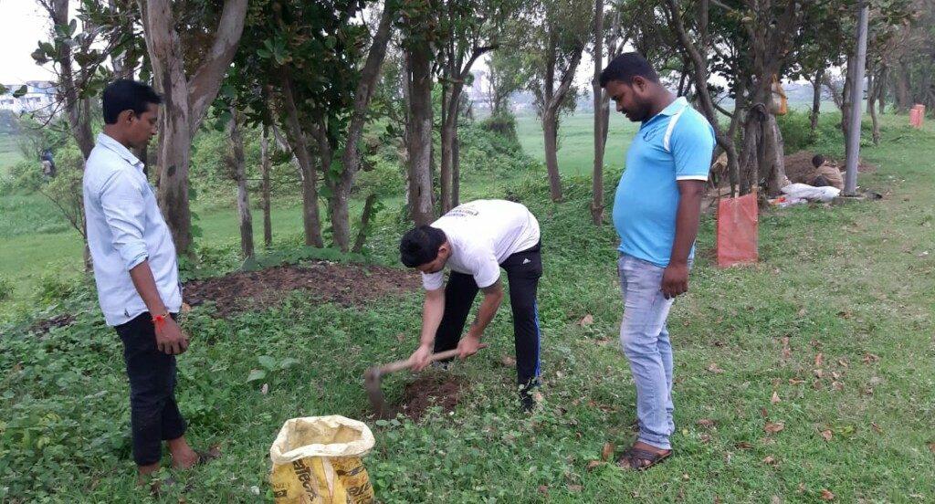 NGO refurbishes palm trees in coastal region plantation drive