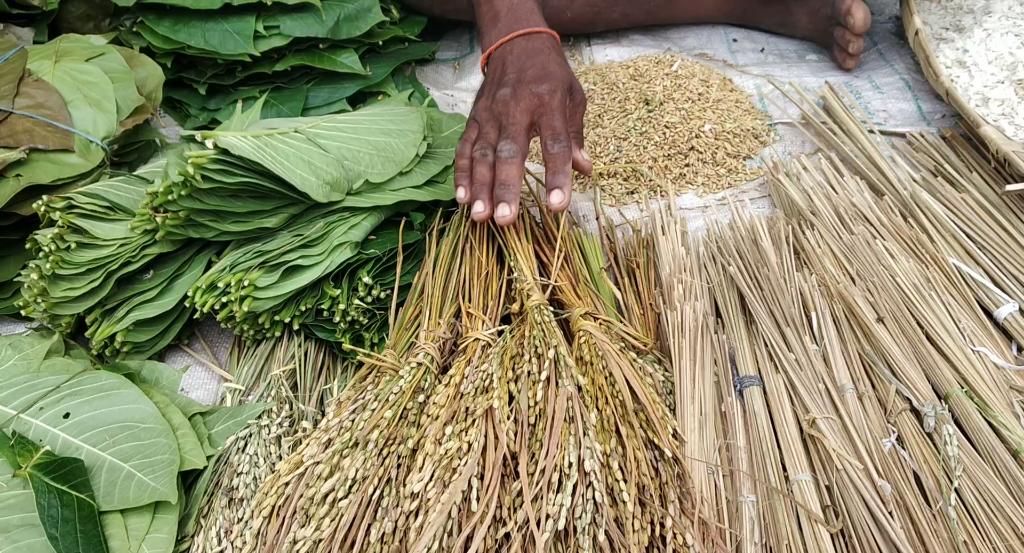 Low key Nuakhai festival due to exorbitant price of Sariaan dhaan