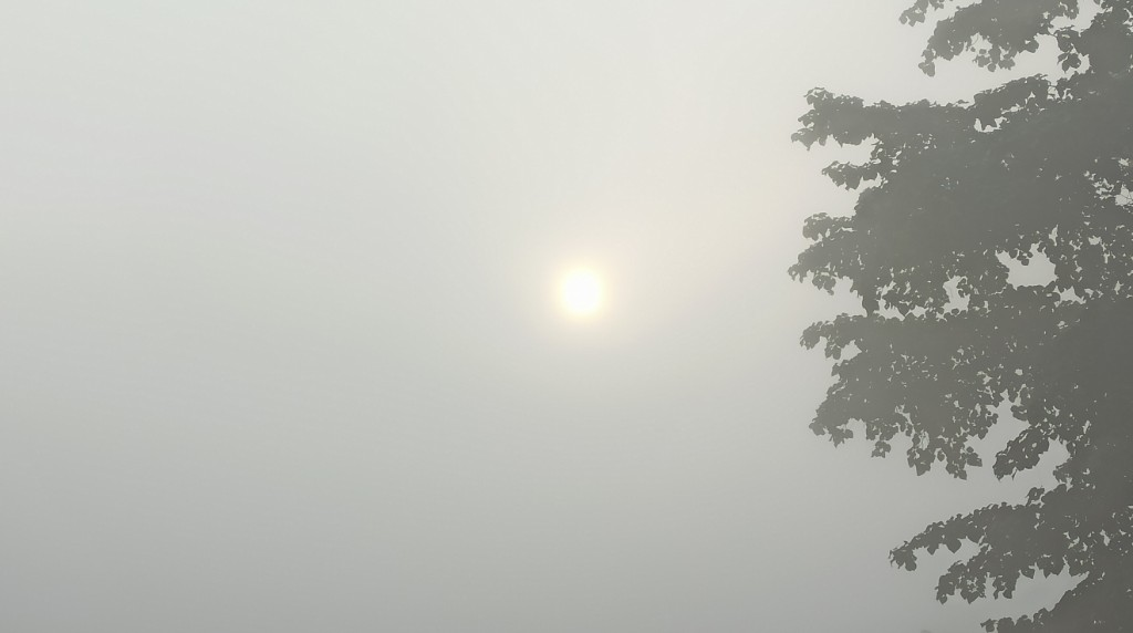 Balangir residents wake up to foggy Sunday