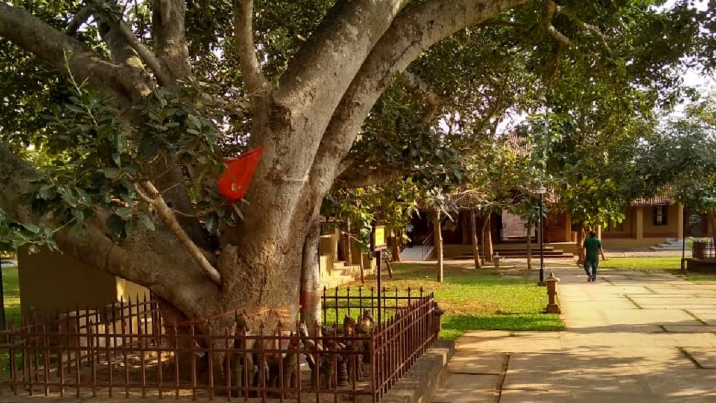 Kala Bhoomi Museum: Your gateway to Odia craft and culture (Special)
