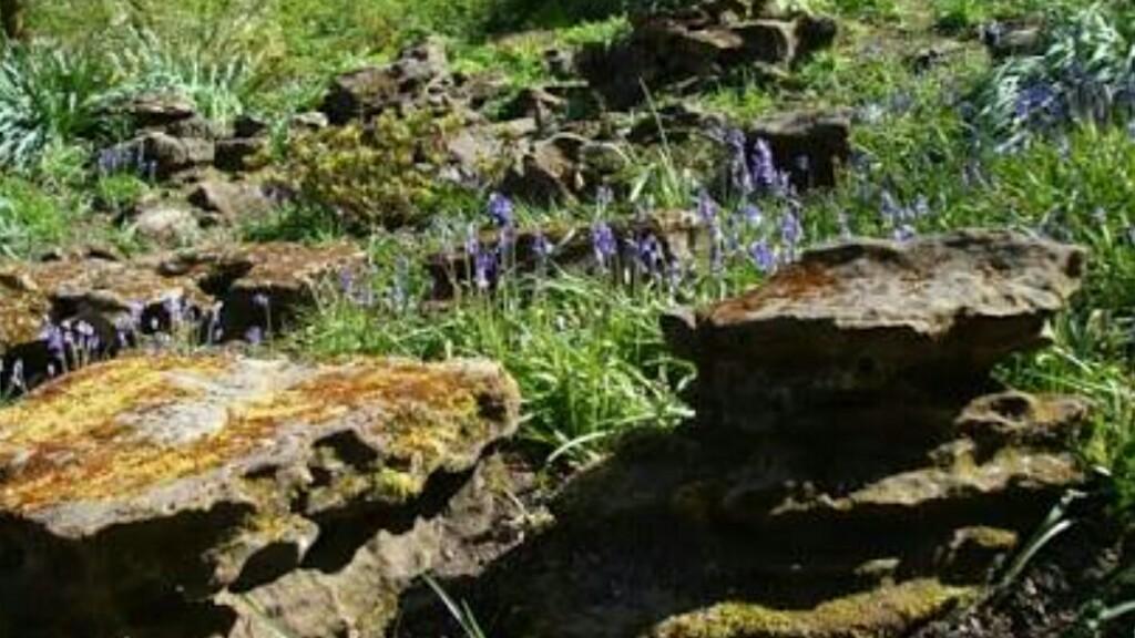 Berhampur civic body starts work on rock garden