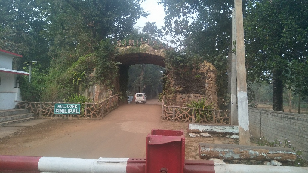 Pack your bags, get ready to be enchanted by Similipal