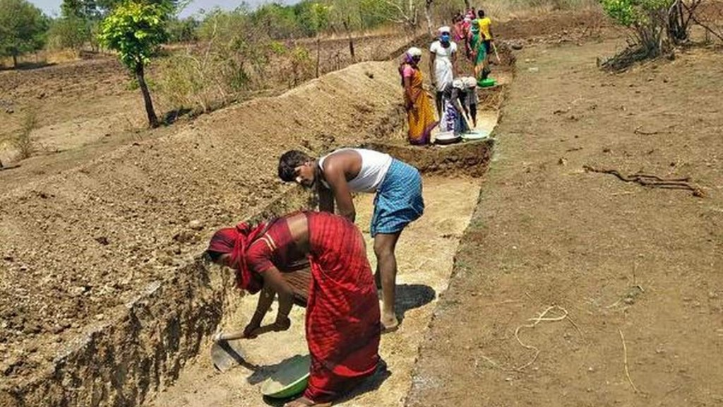Sarpanch and officials under scanner for role in MGNREGA tree plantation scam